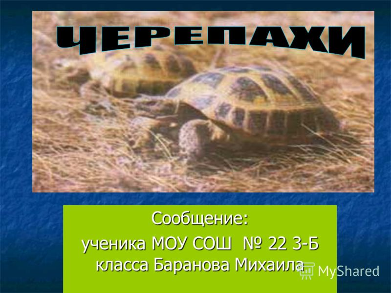 Сообщение: ученика МОУ СОШ 22 3-Б класса Баранова Михаила