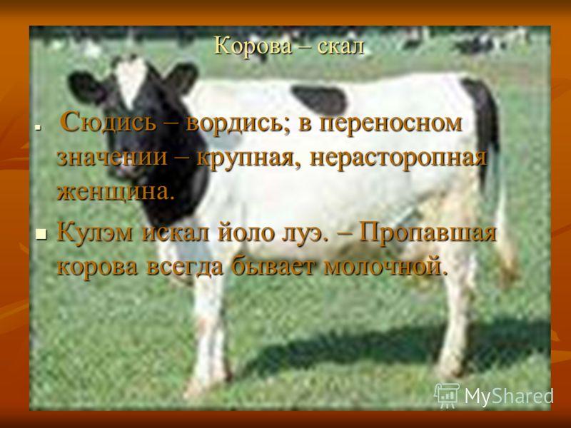 Корова – скал Корова – скал Сюдись – вордись; в переносном значении – крупная, нерасторопная женщина. Сюдись – вордись; в переносном значении – крупная, нерасторопная женщина. Кулэм искал йоло луэ. – Пропавшая корова всегда бывает молочной. Кулэм иск