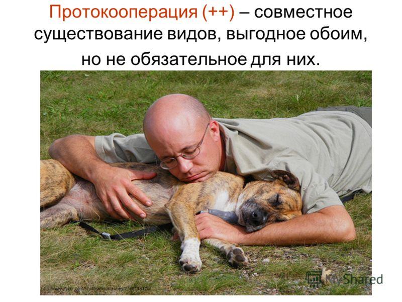 Протокооперация (++) – совместное существование видов, выгодное обоим, но не обязательное для них. http://www.flickr.com/photos/cindihachey/2769119120/