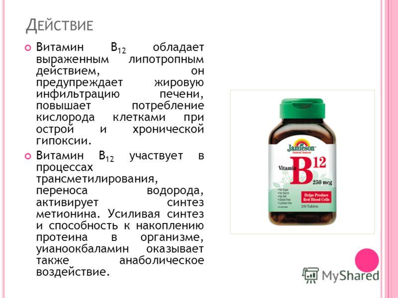 Д ЕЙСТВИЕ Витамин B 12 обладает выраженным липотропным действием, он предупреждает жировую инфильтрацию печени, повышает потребление кислорода клетками при острой и хронической гипоксии. Витамин B 12 участвует в процессах трансметилирования, переноса