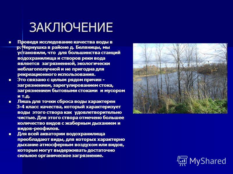 ЗАКЛЮЧЕНИЕ Проведя исследование качества воды в Проведя исследование качества воды в р. Чернушка в районе д. Беляницы, мы установили, что для большинства станций водохранилища и створов реки вода является загрязненной, экологически неблагополучной и