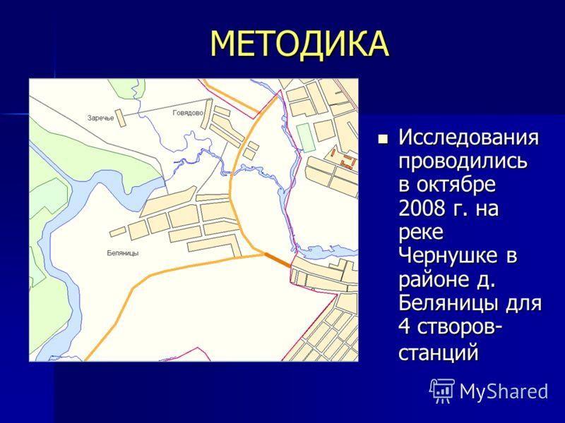 МЕТОДИКА Исследования проводились в октябре 2008 г. на реке Чернушке в районе д. Беляницы для 4 створов- станций Исследования проводились в октябре 2008 г. на реке Чернушке в районе д. Беляницы для 4 створов- станций