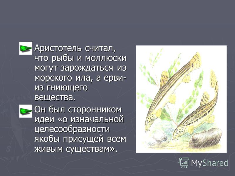 Аристотель считал, что рыбы и моллюски могут зарождаться из морского ила, а ерви- из гниющего вещества. Аристотель считал, что рыбы и моллюски могут зарождаться из морского ила, а ерви- из гниющего вещества. Он был сторонником идеи «о изначальной цел