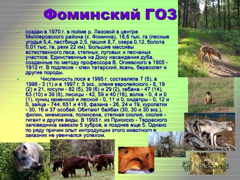 Фоминский ГОЗ создан в 1970 г. в пойме р. Лазовой в центре Миллеровского района (х. Фоминка), 18,6 тыс. га (лесные угодья 5,4, пастбища 2,5, пашня 8,7, озера 0,12, болота 0,01 тыс. га, реки 22 км). Большие массивы естественного леса, степных, луговых