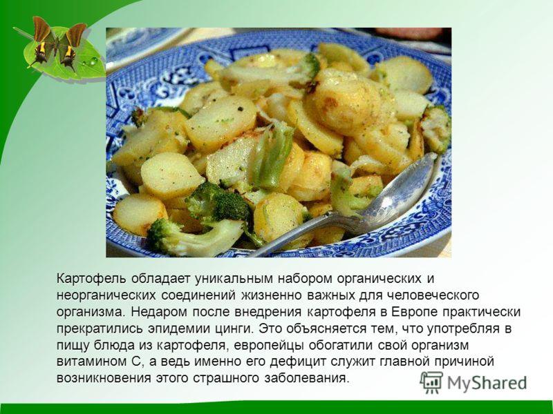 Картофель обладает уникальным набором органических и неорганических соединений жизненно важных для человеческого организма. Недаром после внедрения картофеля в Европе практически прекратились эпидемии цинги. Это объясняется тем, что употребляя в пищу