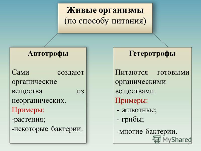 Живые организмы (по способу питания) Автотрофы Сами создают органические вещества из неорганических. Примеры: -растения; -некоторые бактерии. Автотрофы Сами создают органические вещества из неорганических. Примеры: -растения; -некоторые бактерии. Гет
