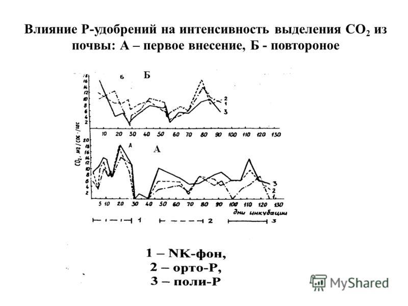 Б А Влияние Р-удобрений на интенсивность выделения СО 2 из почвы: А – первое внесение, Б - повтороное