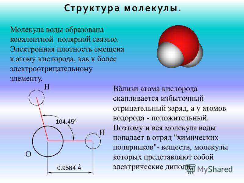 Структура молекулы. Молекула воды образована ковалентной полярной связью. Электронная плотность смещена к атому кислорода, как к более электроотрицательному элементу. Вблизи атома кислорода скапливается избыточный отрицательный заряд, а у атомов водо