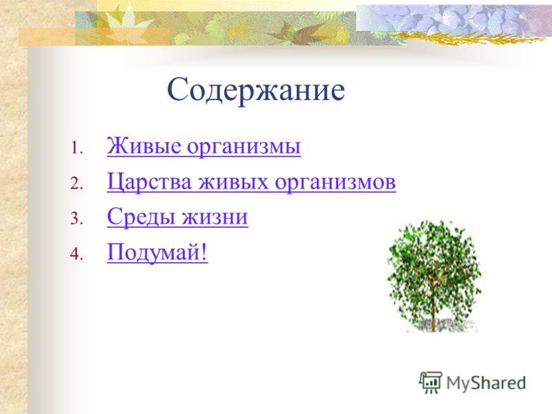 Многообразие живых организмов ©Лифанова Е.В. ГОУ СОШ 280 Санкт-Петербург Биология 6 класс