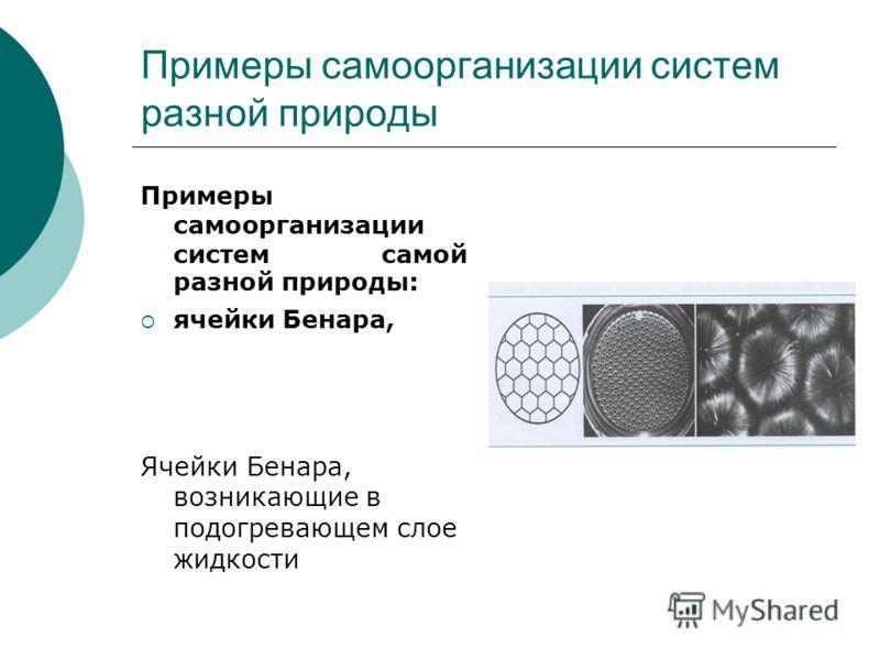 Примеры самоорганизации систем разной природы Примеры самоорганизации систем самой разной природы: ячейки Бенара, Ячейки Бенара, возникающие в подогревающем слое жидкости