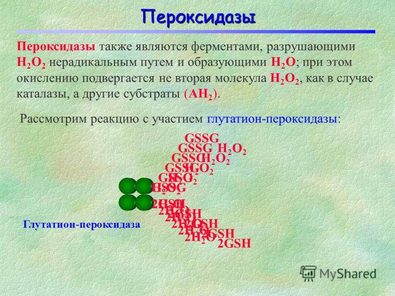 Каталаза представляет собой гемовый фермент, состоящий из четырех субъединиц с общей молекулярной массой около 240 кД. В основе действия каталазы лежит вышеприведенная реакция, протекающая в две стадии: Н2О2Н2О2 Fe(III) Каталаза Н2О2Н2О2 Fe(III) Ката