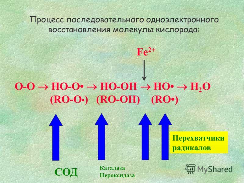 Пероксидазы Пероксидазы также являются ферментами, разрушающими Н 2 О 2 нерадикальным путем и образующими Н 2 О; при этом окислению подвергается не вторая молекула Н 2 О 2, как в случае каталазы, а другие субстраты (АН 2 ). Рассмотрим реакцию с участ