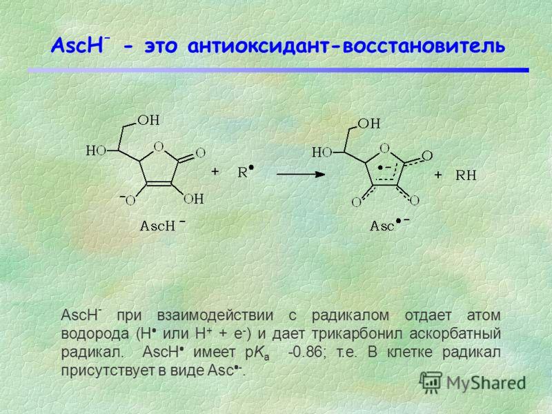 Константы скорости взаимодействия аскорбата с некоторыми радикалами Приведенные константы скорости соответствуют реакции: AscH + R Asc + RH Радикалk эфф /М -1 с -1 (рН=7,4) HO (гидроксильный радикал) 1.1 x 10 10 RO (трет-бутил алкоксильный радикал 1.