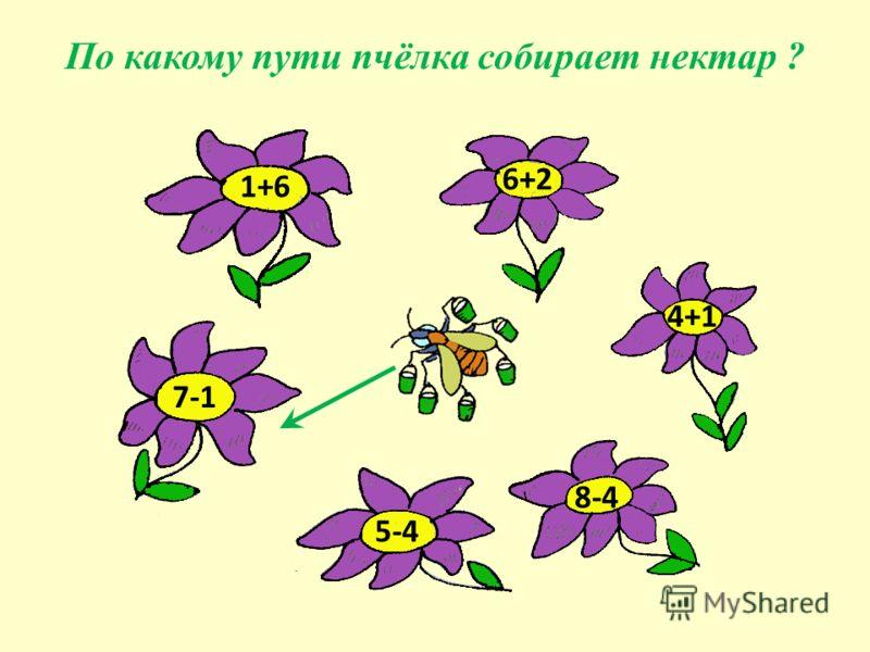 6+2 1+6 4+1 8-4 5-4 7-1 По какому пути пчёлка собирает нектар ?