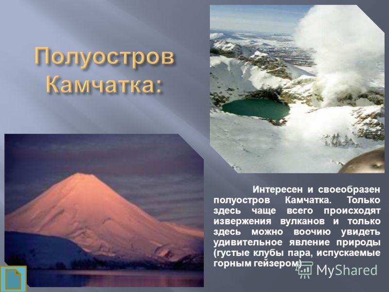 Интересен и своеобразен полуостров Камчатка. Только здесь чаще всего происходят извержения вулканов и только здесь можно воочию увидеть удивительное явление природы (густые клубы пара, испускаемые горным гейзером)