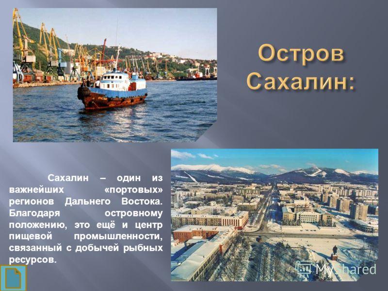 Сахалин – один из важнейших «портовых» регионов Дальнего Востока. Благодаря островному положению, это ещё и центр пищевой промышленности, связанный с добычей рыбных ресурсов.