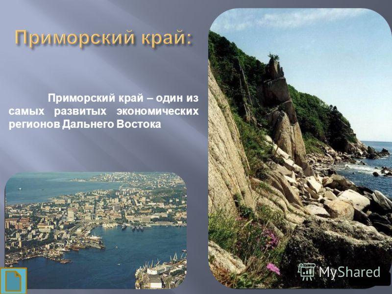 Приморский край – один из самых развитых экономических регионов Дальнего Востока