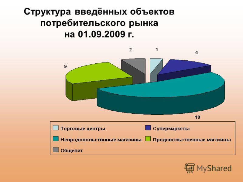 Структура введённых объектов потребительского рынка на 01.09.2009 г.
