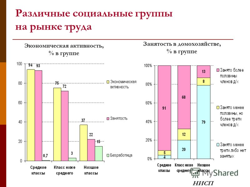 Различные социальные группы на рынке труда Экономическая активность, % в группе Занятость в домохозяйстве, % в группе НИСП