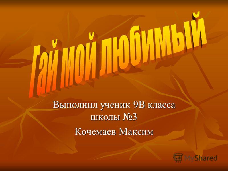 Выполнил ученик 9В класса школы 3 Кочемаев Максим