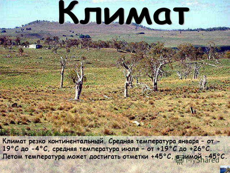 Климат резко континентальный. Средняя температура января – от - 19°С до -4°С, средняя температура июля – от +19°С до +26°С. Летом температура может достигать отметки +45°С, а зимой -45°С.