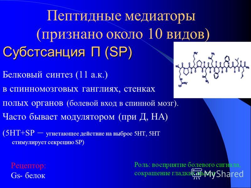 Субстсанция П (SP) Белковый синтез (11 а.к.) в спинномозговых ганглиях, стенках полых органов (болевой вход в спинной мозг). Часто бывает модулятором (при Д, НА) (5НТ+SP – угнетающее действие на выброс 5НТ, 5НТ стимулирует секрецию SP) Рецептор: Gs-