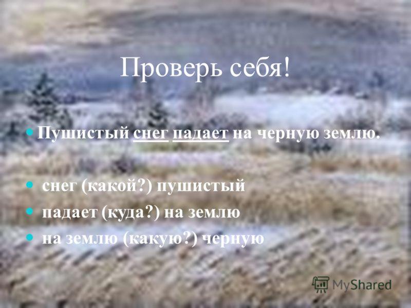 Проверь себя! Пушистый снег падает на черную землю. снег (какой?) пушистый падает (куда?) на землю на землю (какую?) черную