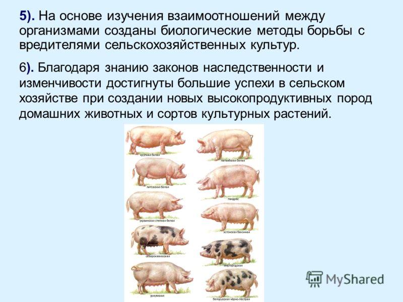 6). Благодаря знанию законов наследственности и изменчивости достигнуты большие успехи в сельском хозяйстве при создании новых высокопродуктивных пород домашних животных и сортов культурных растений. 5). На основе изучения взаимоотношений между орган