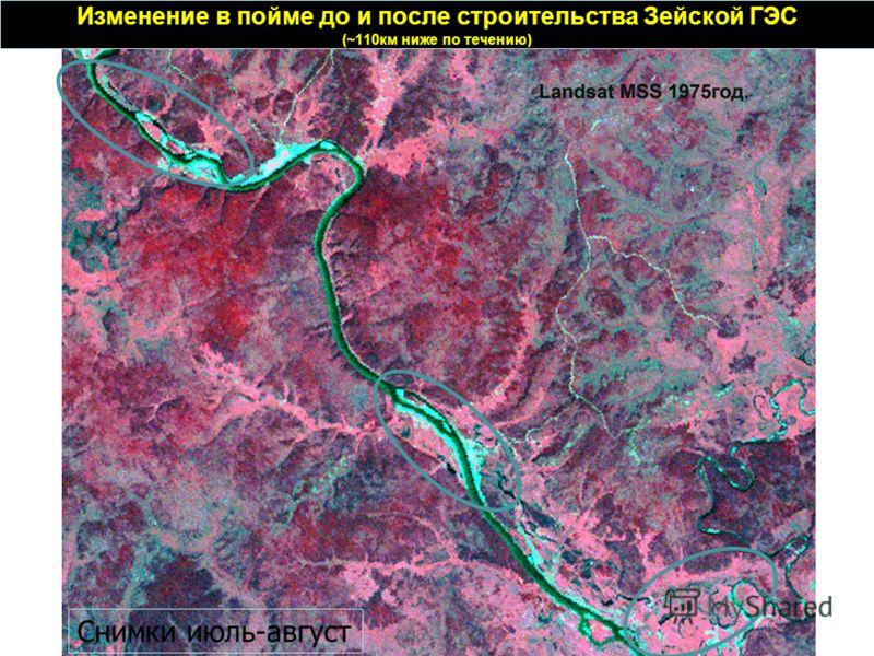 Изменение в пойме до и после строительства Зейской ГЭС (~110км ниже по течению) Снимки июль-август