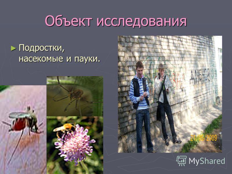 Объект исследования Подростки, насекомые и пауки. Подростки, насекомые и пауки.