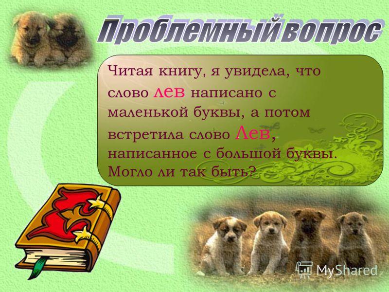Читая книгу, я увидела, что слово лев написано с маленькой буквы, а потом встретила слово Лев, написанное с большой буквы. Могло ли так быть?