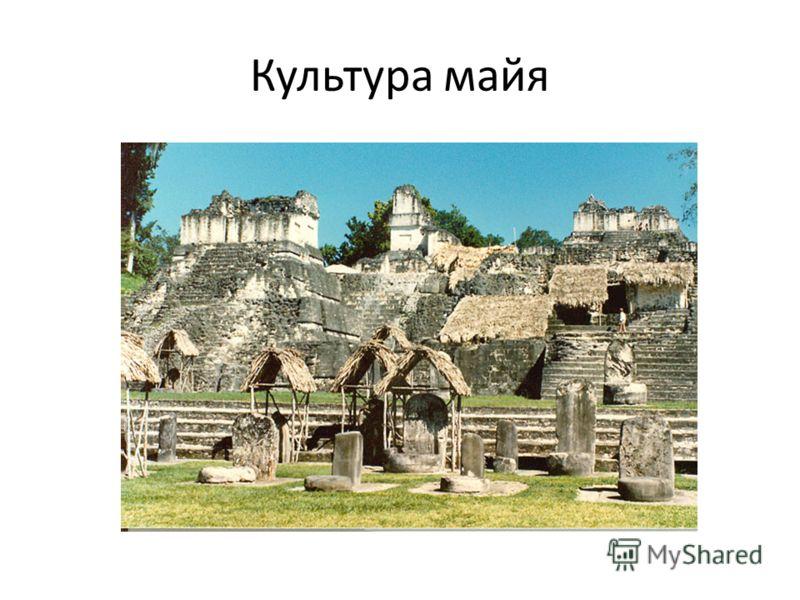 Культура майя