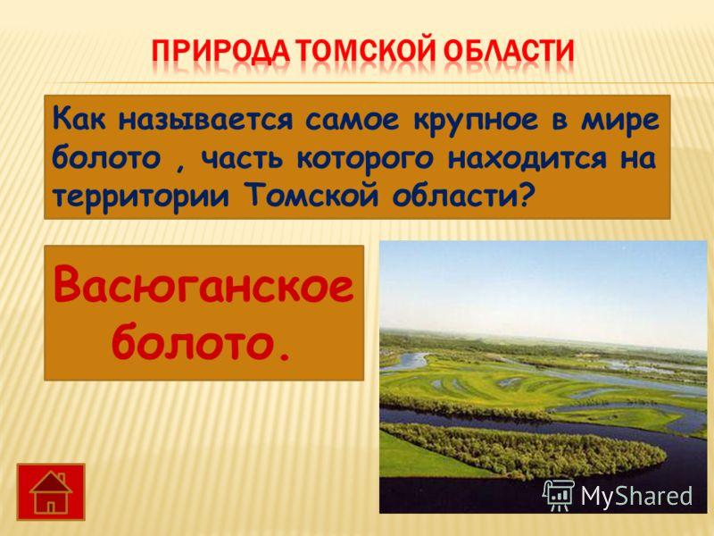 Как называется самое крупное в мире болото, часть которого находится на территории Томской области? Васюганское болото.