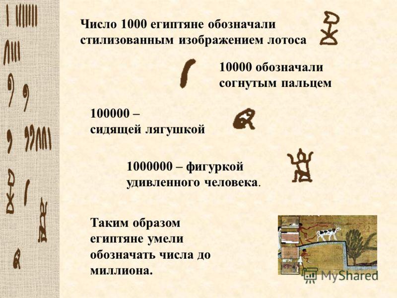 Число 1000 египтяне обозначали стилизованным изображением лотоса 10000 обозначали согнутым пальцем Таким образом египтяне умели обозначать числа до миллиона. 100000 – сидящей лягушкой 1000000 – фигуркой удивленного человека.