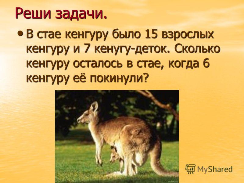 Реши задачи. В стае кенгуру было 15 взрослых кенгуру и 7 кенугу-деток. Сколько кенгуру осталось в стае, когда 6 кенгуру её покинули? В стае кенгуру было 15 взрослых кенгуру и 7 кенугу-деток. Сколько кенгуру осталось в стае, когда 6 кенгуру её покинул