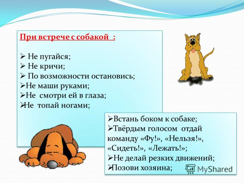 При встрече с собакой : Не пугайся; Не кричи; По возможности остановись; Не маши руками; Не смотри ей в глаза; Не топай ногами; При встрече с собакой : Не пугайся; Не кричи; По возможности остановись; Не маши руками; Не смотри ей в глаза; Не топай но