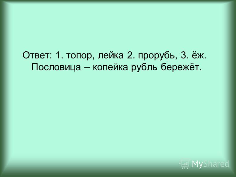 Ответ: 1. топор, лейка 2. прорубь, 3. ёж. Пословица – копейка рубль бережёт.