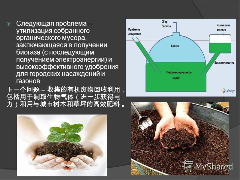 Следующая проблема – утилизация собранного органического мусора, заключающаяся в получении биогаза (с последующим получением электроэнергии) и высокоэффективного удобрения для городских насаждений и газонов. –