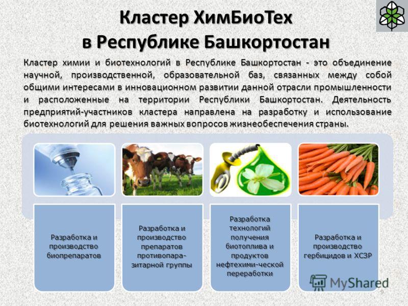Кластер ХимБиоТех в Республике Башкортостан Кластер химии и биотехнологий в Республике Башкортостан - это объединение научной, производственной, образовательной баз, связанных между собой общими интересами в инновационном развитии данной отрасли пром