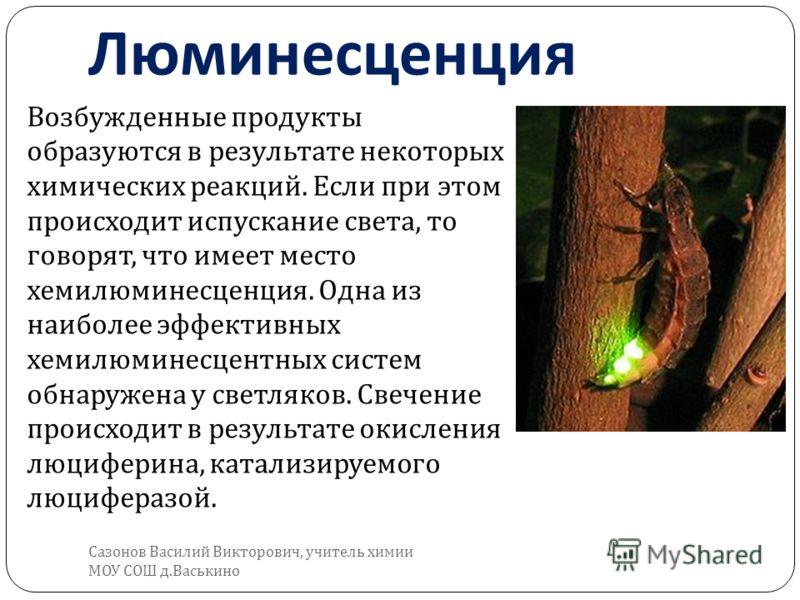 Возбужденные продукты образуются в результате некоторых химических реакций. Если при этом происходит испускание света, то говорят, что имеет место хемилюминесценция. Одна из наиболее эффективных хемилюминесцентных систем обнаружена у светляков. Свече