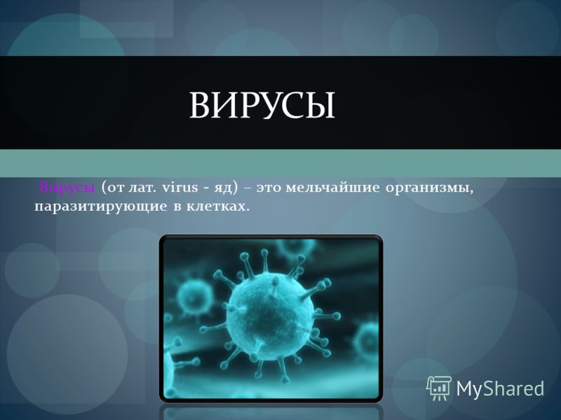 Вирусы (от лат. virus - яд) – это мельчайшие организмы, паразитирующие в клетках. ВИРУСЫ