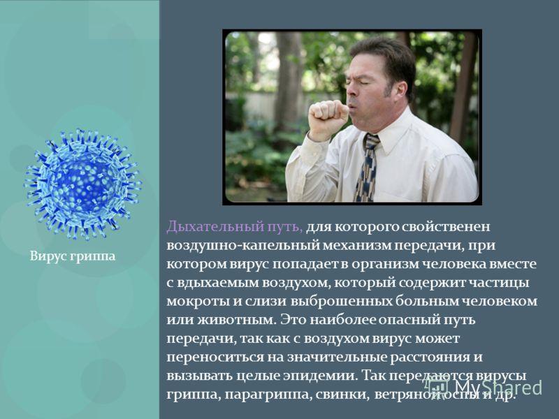 Дыхательный путь, для которого свойственен воздушно-капельный механизм передачи, при котором вирус попадает в организм человека вместе с вдыхаемым воздухом, который содержит частицы мокроты и слизи выброшенных больным человеком или животным. Это наиб