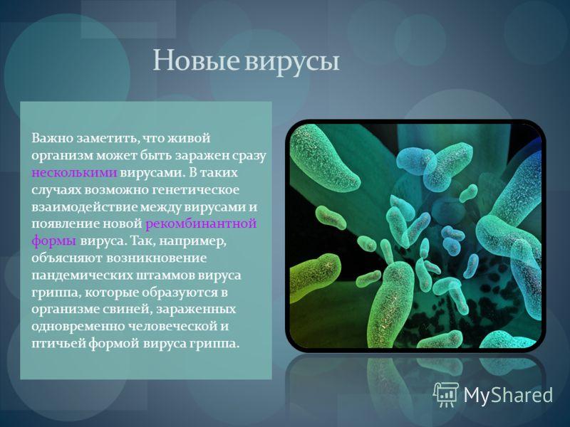 Новые вирусы