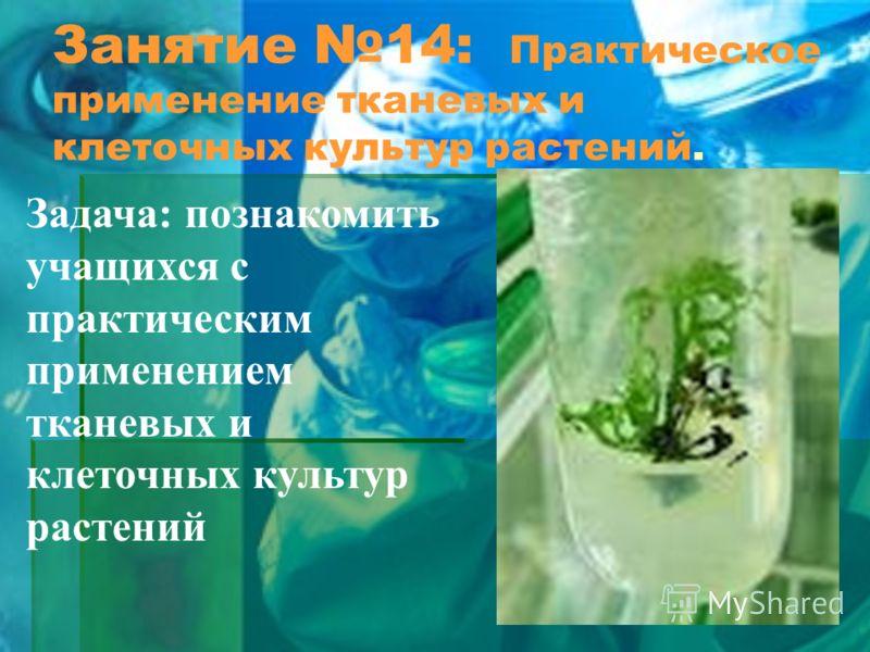 Занятие 14: Практическое применение тканевых и клеточных культур растений. Задача: познакомить учащихся с практическим применением тканевых и клеточных культур растений