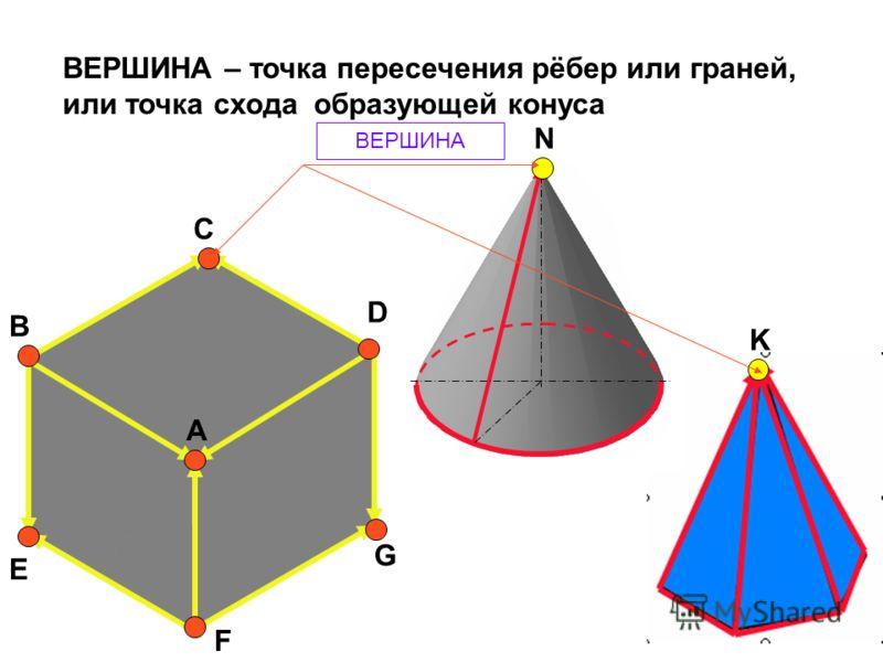 А B C D E F G N K ВЕРШИНА – точка пересечения рёбер или граней, или точка схода образующей конуса ВЕРШИНА