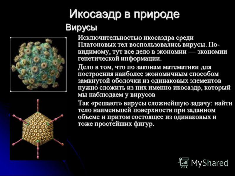 Вирусы Исключительностью икосаэдра среди Платоновых тел воспользовались вирусы. По- видимому, тут все дело в экономии экономии генетической информации. Дело в том, что по законам математики для построения наиболее экономичным способом замкнутой оболо