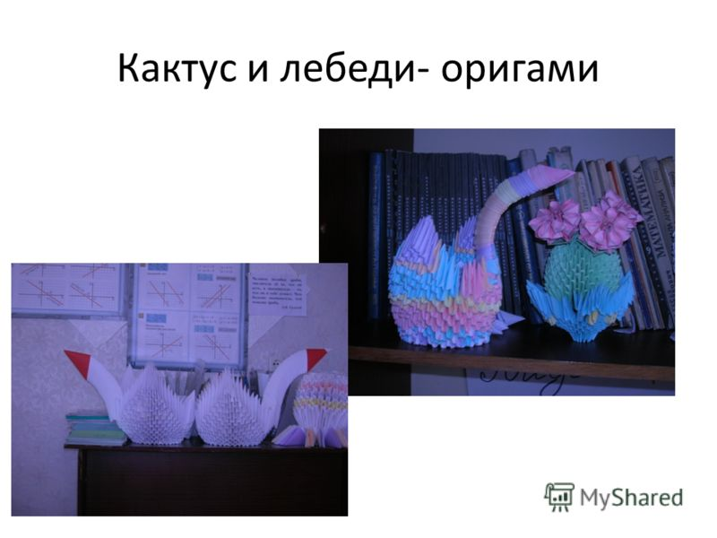 Кактус и лебеди- оригами