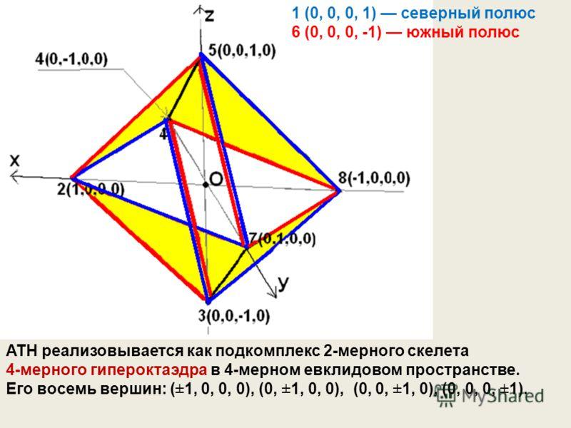 1 (0, 0, 0, 1) северный полюс 6 (0, 0, 0, -1) южный полюс ATH реализовывается как подкомплекс 2-мерного скелета 4-мерного гипероктаэдра в 4-мерном евклидовом пространстве. Его восемь вершин: (±1, 0, 0, 0), (0, ±1, 0, 0), (0, 0, ±1, 0), (0, 0, 0, ±1).