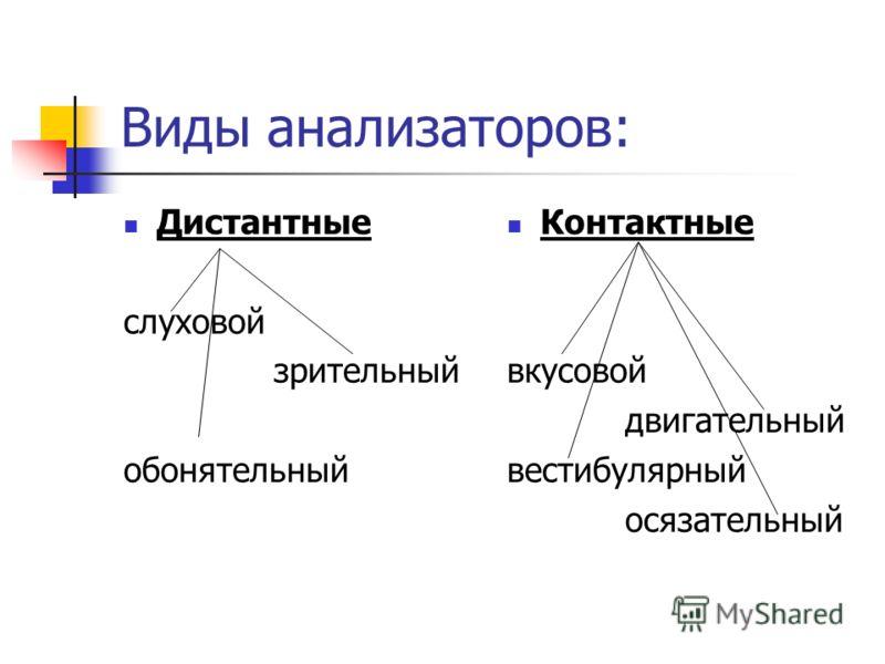 Значение анализаторов: Связь с внешней средой; Познавательная деятельность ( обучение, трудовая деятельность); Общение; Эстетическое наслаждение.