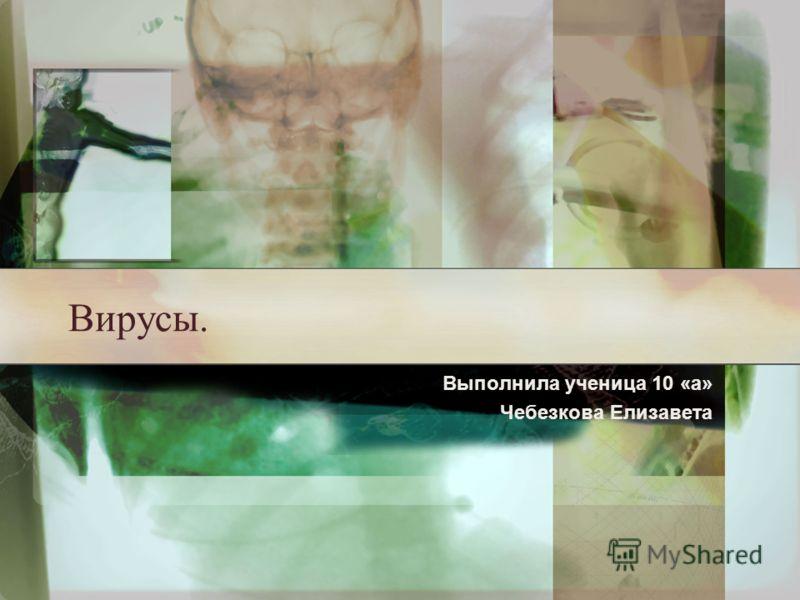 Вирусы. Выполнила ученица 10 «а» Чебезкова Елизавета